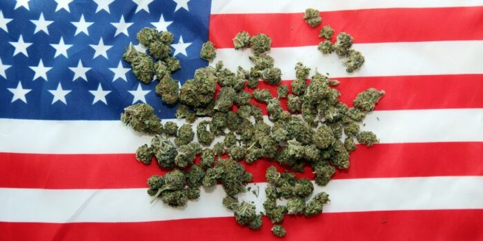 A bill to triple the THC limit for hemp grown in the United States has been introduced by Kentucky Sen. Rand Paul.